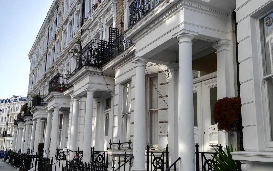 Luxury Dog Hotel London